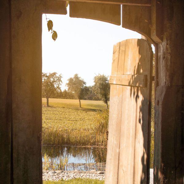 Das Bild zeigt ein Tor zu einem Feld.