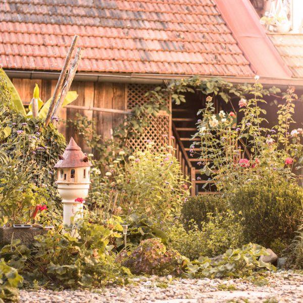 Das Bild zeigt einen den Garten im Innenhof.