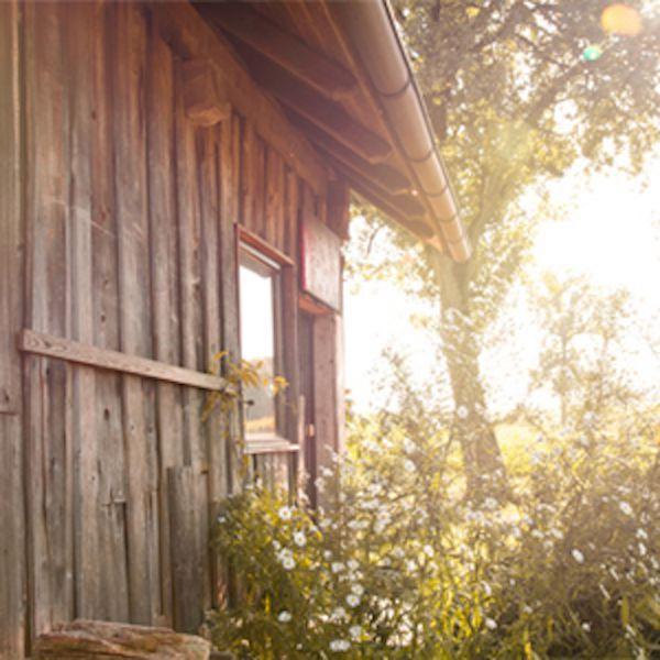 Das Bild zeigt die alte Hütte von außen welche schon seit vielen vielen Jahren den Hof mit ihrer Urigkeit ziert.